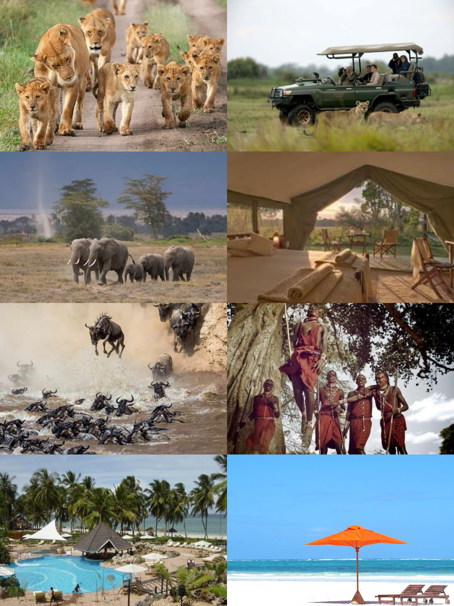 Ultimate Africa Expeditions